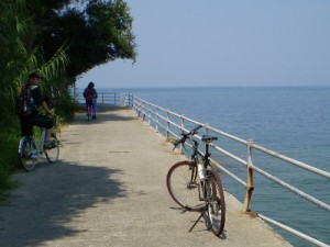 ooshima-cycling
