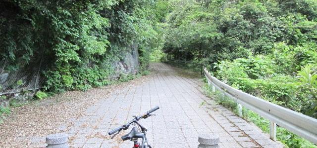 遠登志渓谷で自然を満喫!